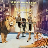 Magnumi kaunitarid Tallinn Fashion Week'il.